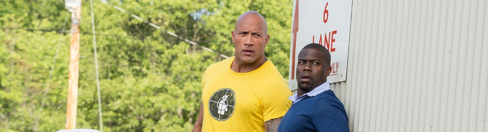 Central Intelligence 2016 Bluray HD Dubbed In Hindi HD Download